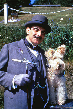 Bob the wire fox terrier- Filming Poirot